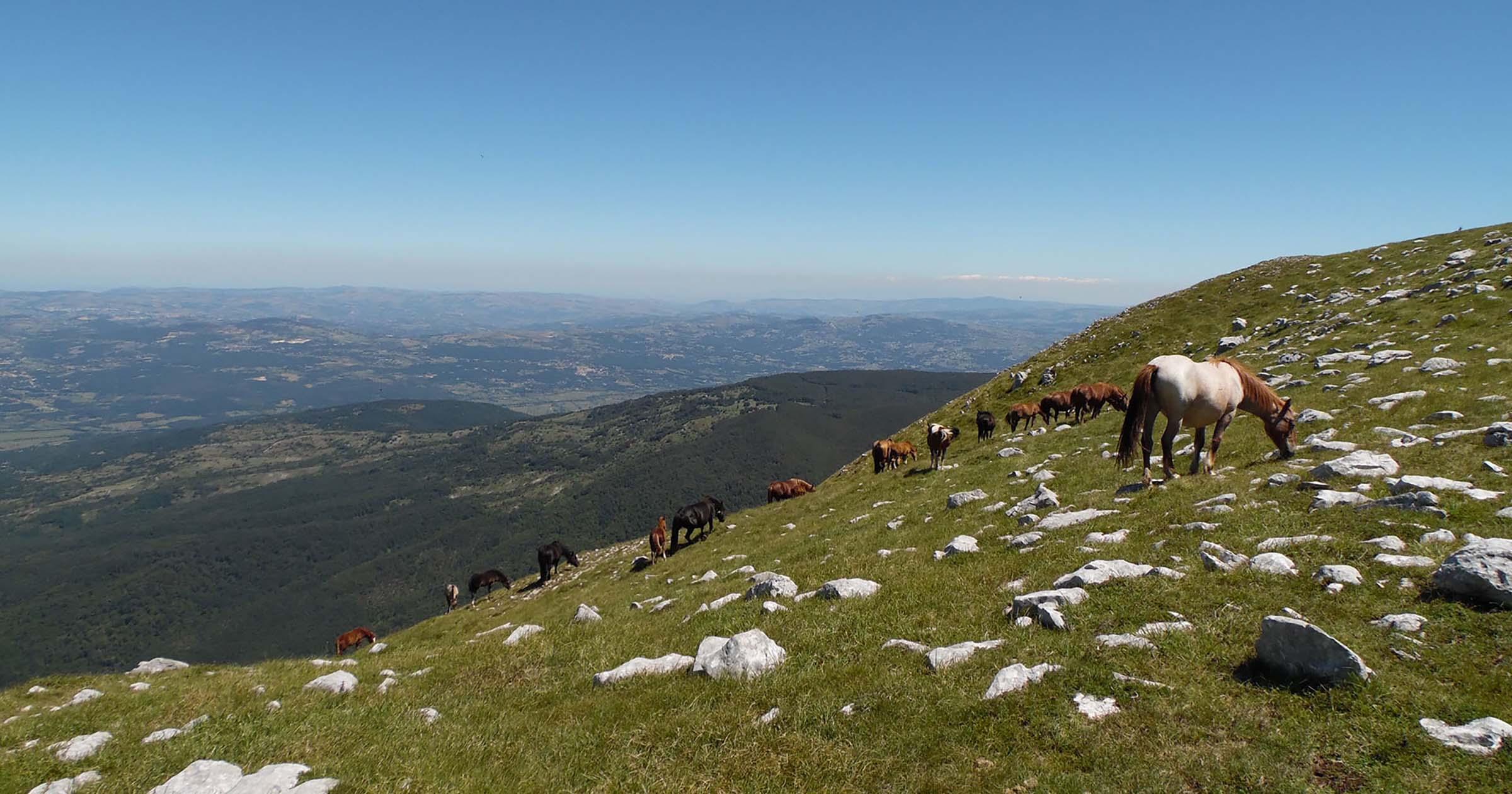 Monte Mutria, traversata mozzafiato